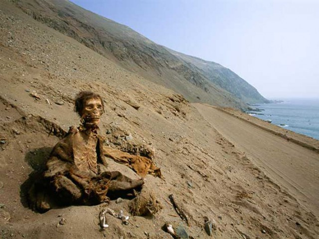 death-cult-mummies-desert-shore_58198_600x450